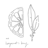 No.2 Bergamot + Bay - medium