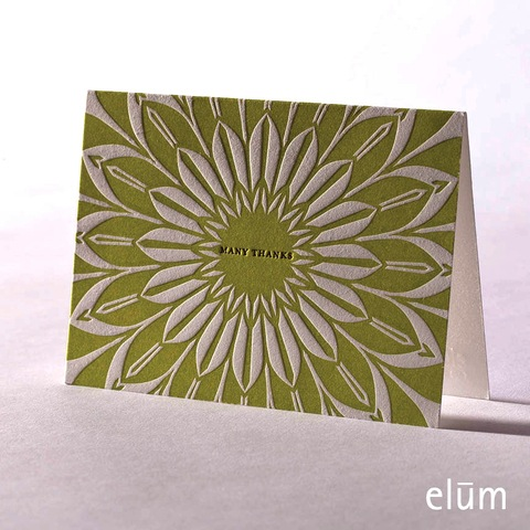 Boxed Thank You Cards - Sunburst Green