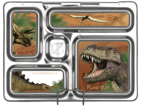 Planet Box - Rover Lunchbox Magnets - Dinosaurs