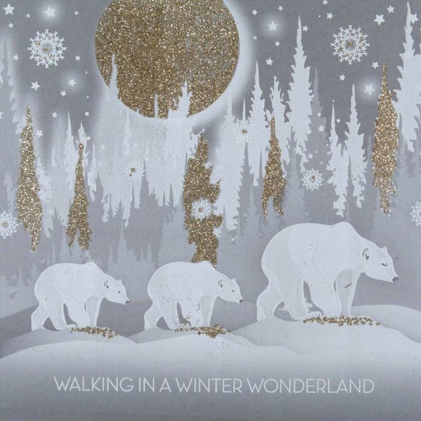 S.S.N. - Walking In A Winter Wonderland - Boxed Cards
