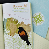 "WRITE NOW JOURNAL - ""I take to the open road"""