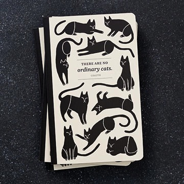 WRITE NOW JOURNAL - There are no ordinary cats.