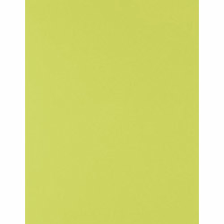 "Wrap Roll - Chartreuse Size: 30"" x 10' continuous roll"