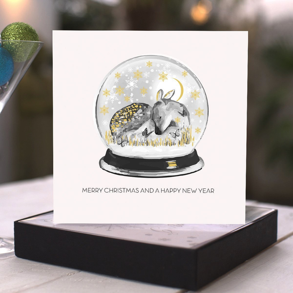 Merry Christmas and a Happy New Year - Snowglobe - boxed cards