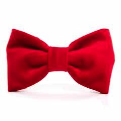 Cranberry Velvet Dog Bow Tie - Standard