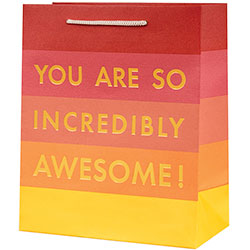 You Are Awesome Foil Large Bag