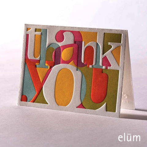 Boxed Thank You Cards - Calypso