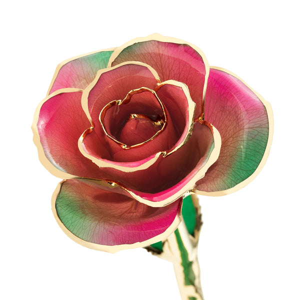 Fairy Forest Pink 24K Gold Dipped Rose - Wall Drug Store