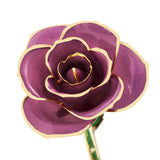 Lovely Lavender 24K Gold Dipped Rose - Wall Drug Store
