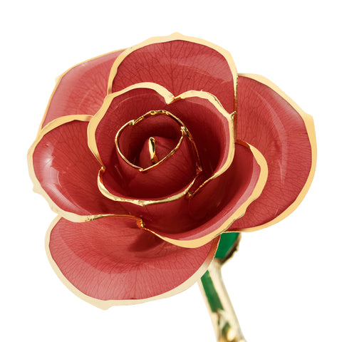 Evening Coral 24K Gold Dipped Rose - Wall Drug Store