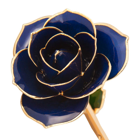 Midnight Blue 24K Gold Dipped Rose - Wall Drug Store
