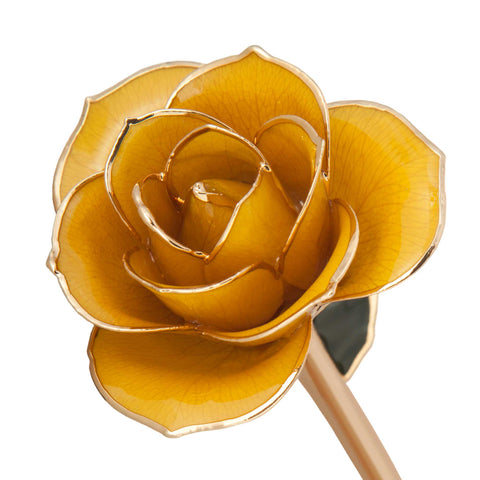 Sunshine Yellow 24K Gold Dipped Rose - Wall Drug Store