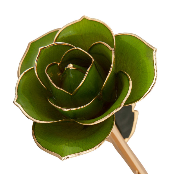 Mossy Green 24K Gold Dipped Rose - Wall Drug Store