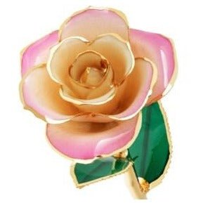 Blushed Pink 24K Gold Dipped Rose - Wall Drug Store