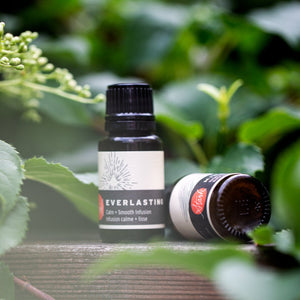 EVERLASTING Calm + Smooth Infusion (oil free hydrating serum)