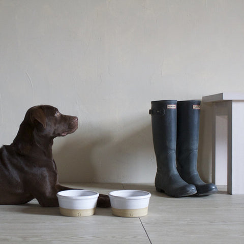 Farm Dog Bowl