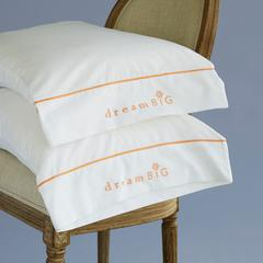 Pillow Case Gift Set (Dream Big or Love and Appreciation)