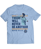There Will Never Be Another - David Villa