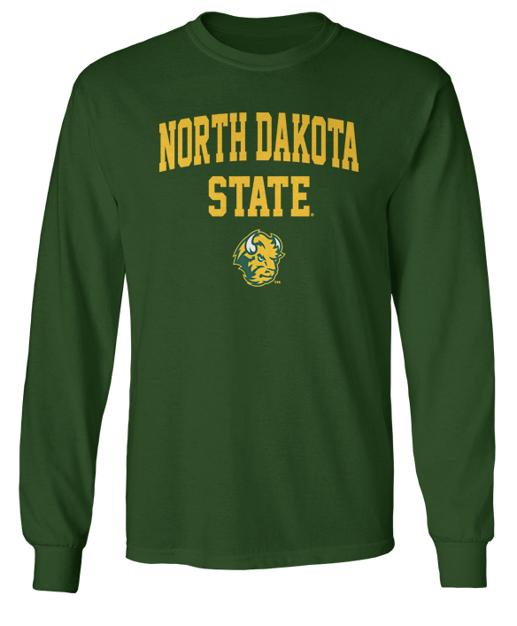 Simple Arch - North Dakota State Bison