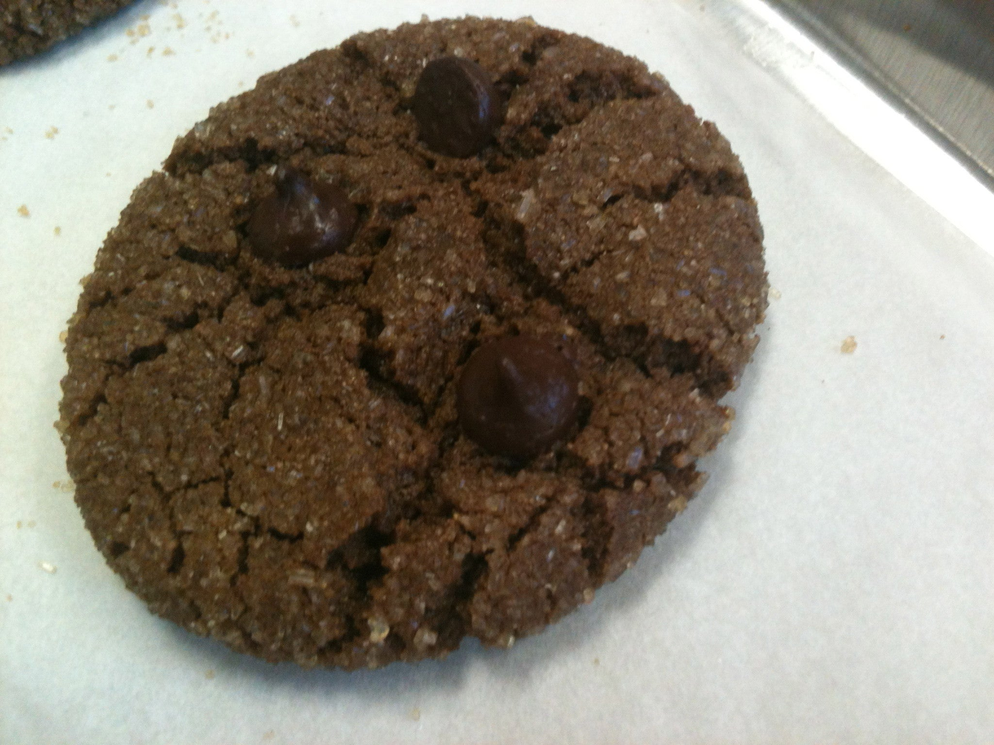 Cocoa Almond Butter Cookie @