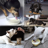 Feed food to Dogs