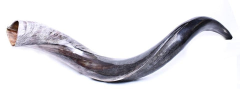 Yeminite Shofar