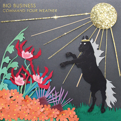 Big Business Command Your Weather LP vinyl