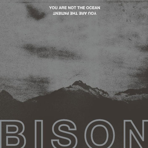 Bison You Are Not The Ocean You Are The Patient LP on Black vinyl