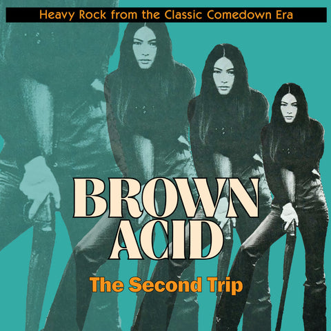Brown Acid The Second Trip LP on Black Vinyl