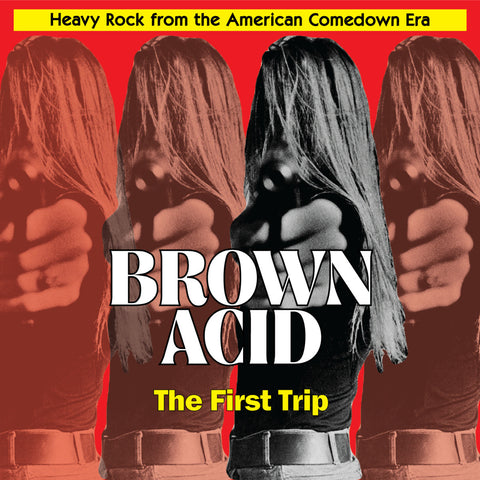 Brown Acid The First Trip LP