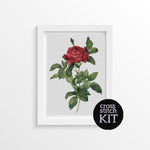 Rosa Gallica Pontiana Cross Stitch Kit