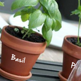 Garden Herb Pot Decals - Type 2