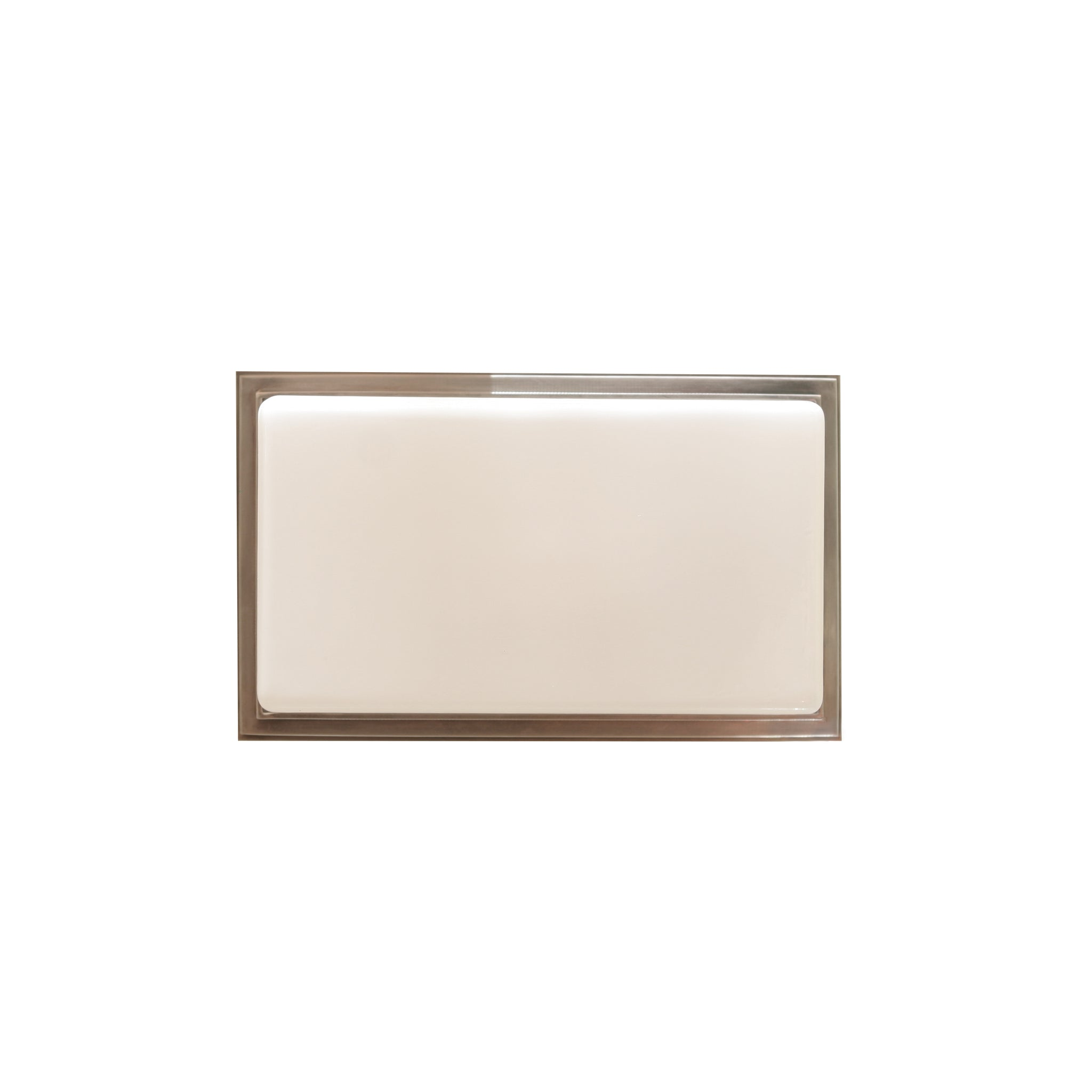 Newhouse Ceiling/Wall Light