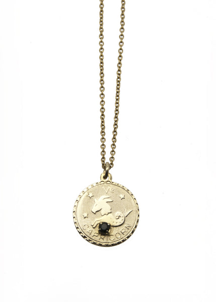 Zodiac Sign Necklace Capricorn