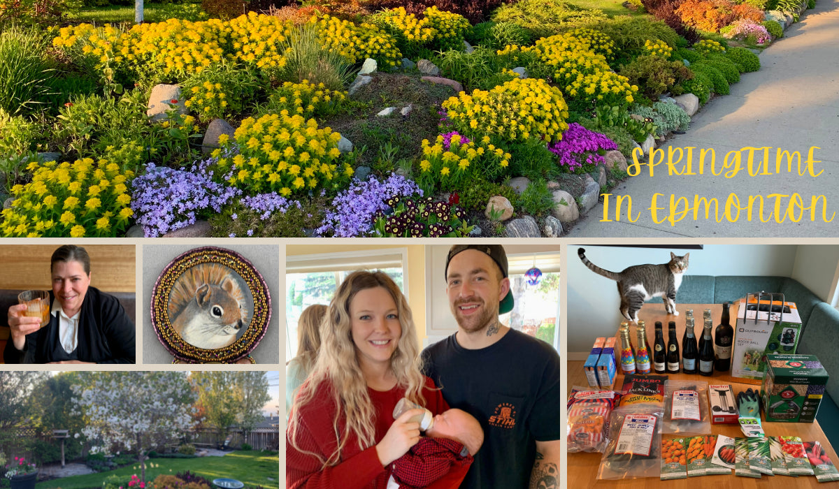 Fire Crafted Glass Beads & Artisan Jewelry