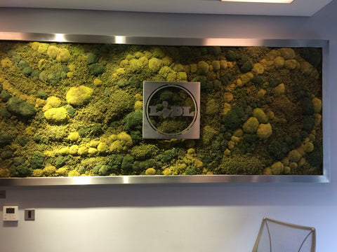 Preserved natural moss wall - PlantPeople