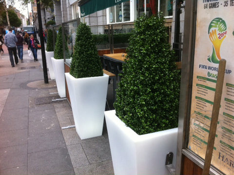 Outside Seating Area - PlantPeople