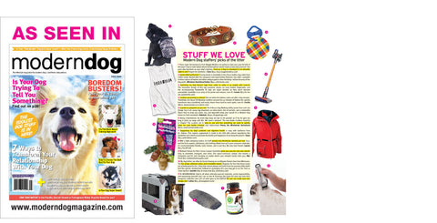 leather dog collars modern dog magazine