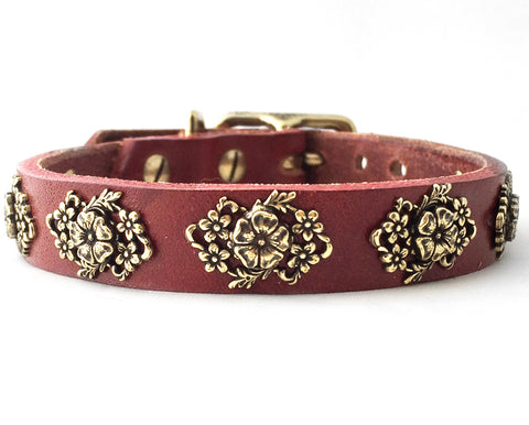 molly small dog collar