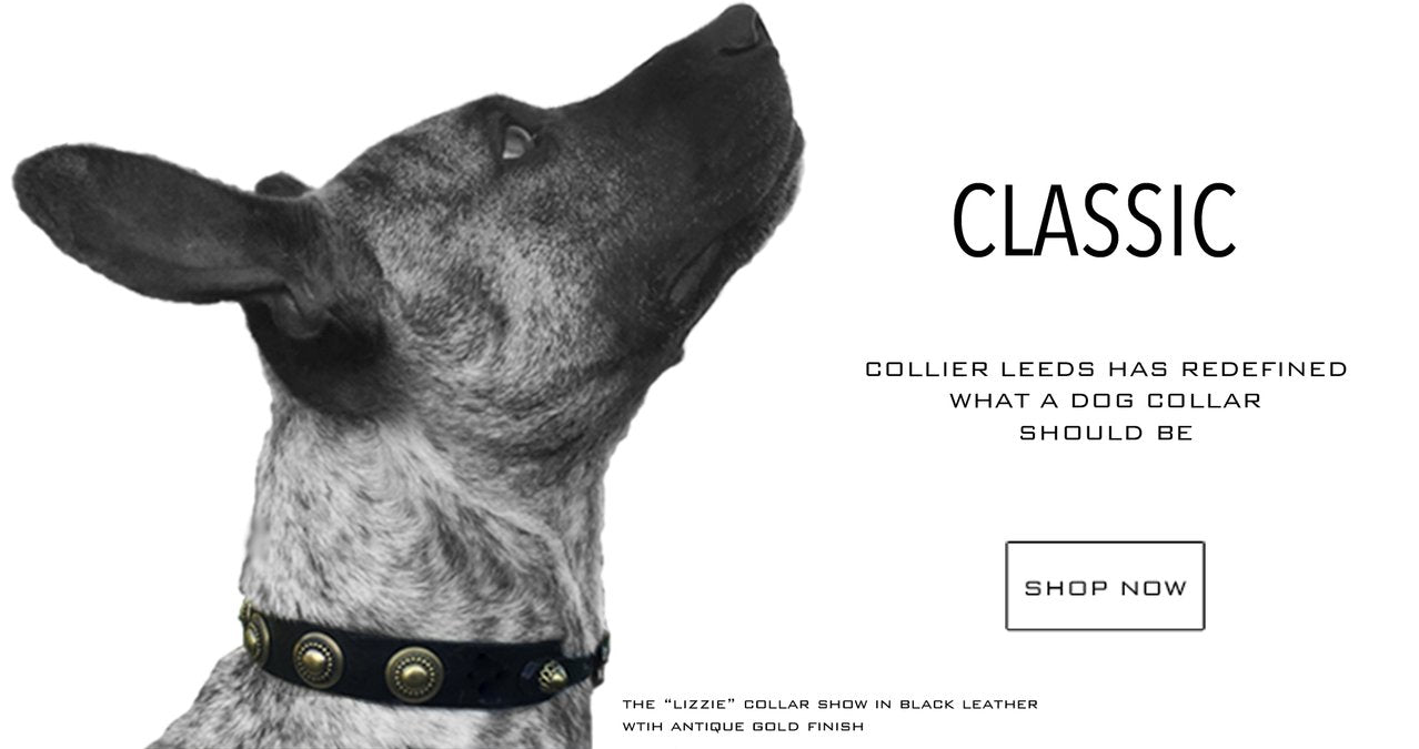 collier leeds leather dog collars