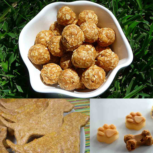 3 Easy DIY Dog Treats