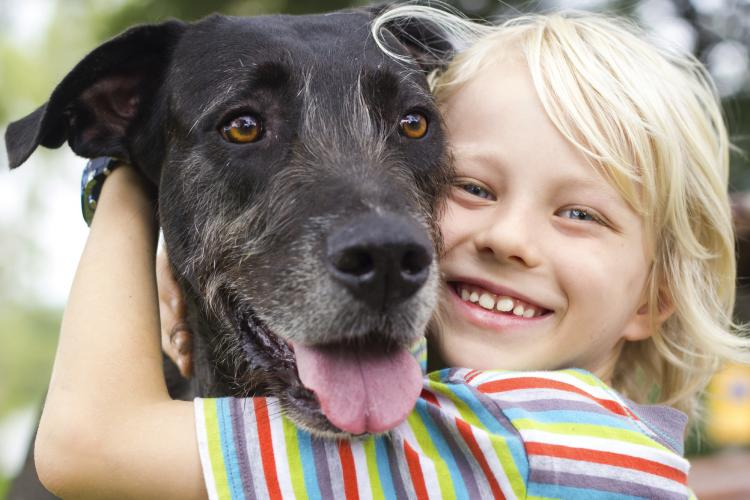 5 Ways to Show Appreciation for Your Dog