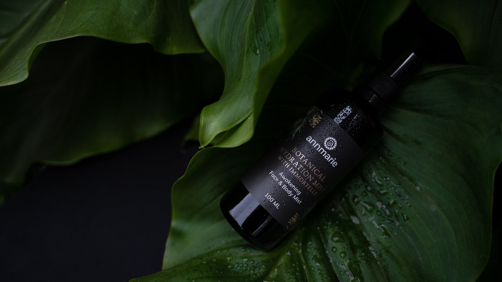 How to use Botanical Hydration Mist with Immortelle
