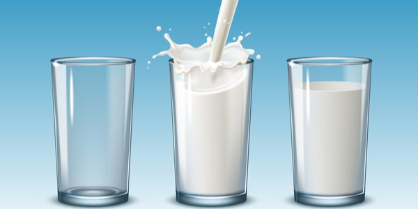 The Problem With Dairy Products