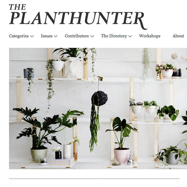 The Planthunter / November 16