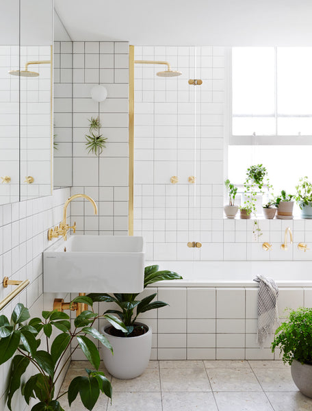 The IVY MUSE guide to bathroom plant styling