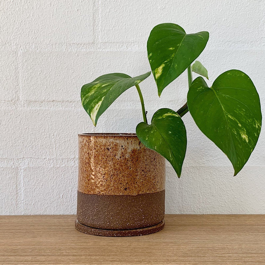 JENN JOHNSTON ID Planter | Top Deck