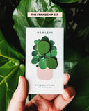 HEMLEVA Pilea 'The Friendship Plant'