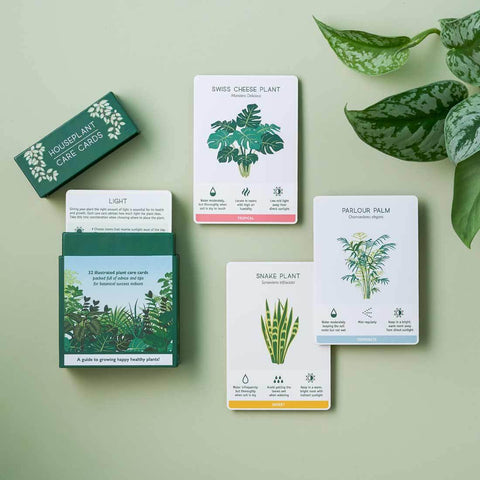 ANOTHER STUDIO Houseplant Care Cards