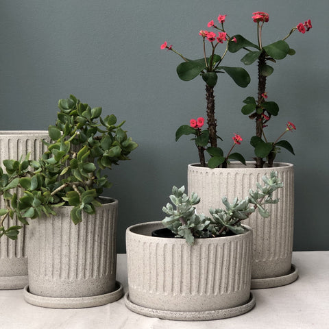 ARCADIA SCOTT Raw Earth Fluted Planter | Speckled Grey